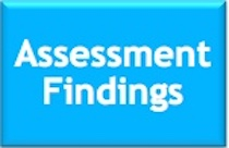 Assessment Findings Graphic